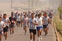 Noticias: Corrida Fuerza Aerea congregò 500 atletas